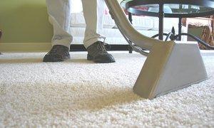 Как почистить ковролин в домашних условиях: самые действенные способы и особенности уборки